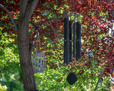 Wind chimes hanging from a tree on a colorful day