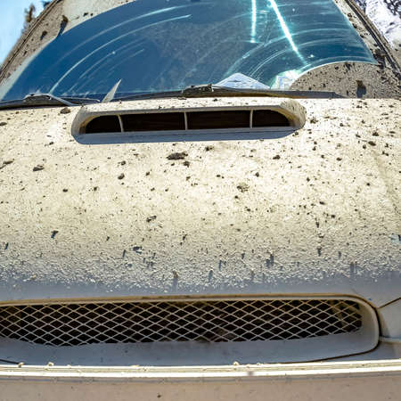 Hood of a vehicle coated with crusted mud