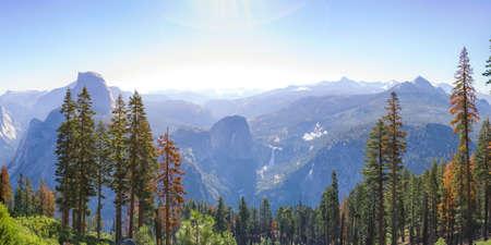 Towering trees and vast mountain at Yosemite CA