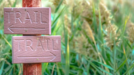 Wooden trail signs with grasses in the background
