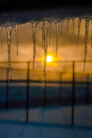 Icicles against sky with golden sun at sunset Imagens