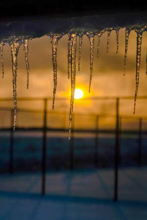 Icicles against sky with golden sun at sunset Reklamní fotografie