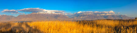 Sunlit grasses against mountain and sky in Utah