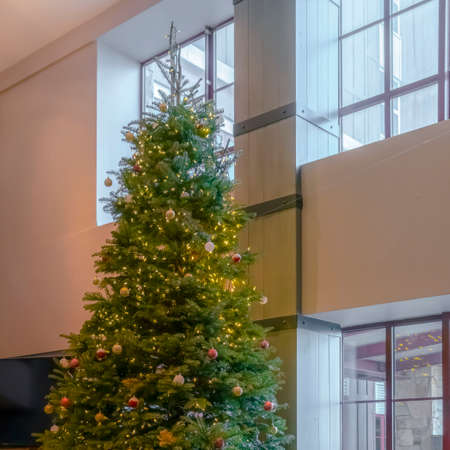 Clear Square Traditional Christmas tree decorated with baubles lights and gift boxes. An alcove window seat behind the tree has a beautiful view of the sunny outdoors. 스톡 콘텐츠