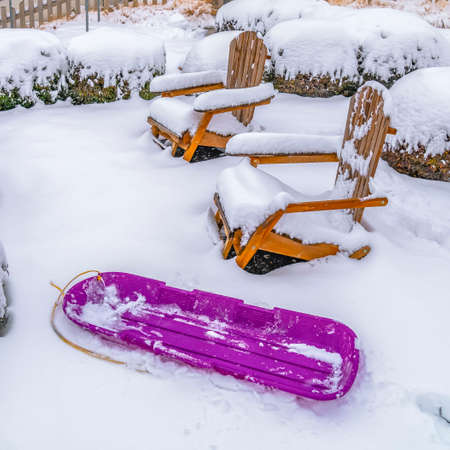 Clear Square Purple sled wooden chairs and shrubs inside a snowy garden in Daybreak Utah. A blue home with snow covered roof in winter can be seen in the background. 版權商用圖片
