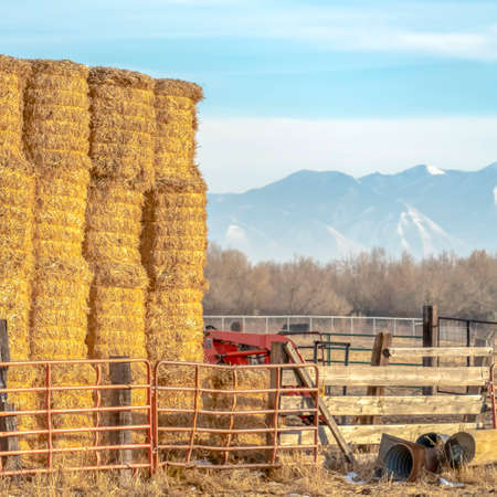 Clear Square Blocks of hay piled inside a fenced area on a farm in Eagle Mountain Utah. A scenic background of mountain and sky can be seen on this sunny winter day. Banque d'images - 122766844