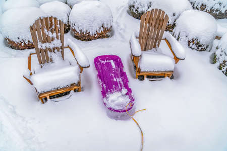 Wooden chairs and purple sled against powdery white snow in Daybreak Utah. Behind the chairs are round shrubs capped with snow during winter season. 版權商用圖片