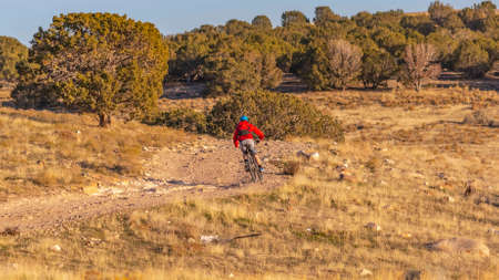 Clear Panorama Man riding a bicycle on an unpaved trail on a sunny day. The trail winds through the vast grassy terrain with lush trees under a clear blue sky.