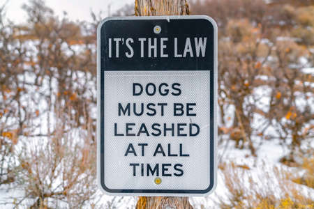 Close up of a Dog Leash sign on a wooden post against a snowy landscape