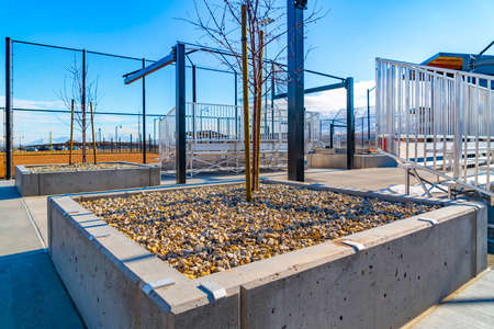 Raised concrete square beds with rocks and tree saplings at a sunny park Stock Photo