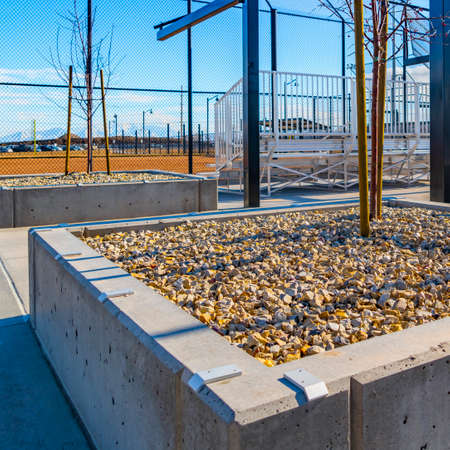 Square Raised concrete square beds with rocks and tree saplings at a sunny park