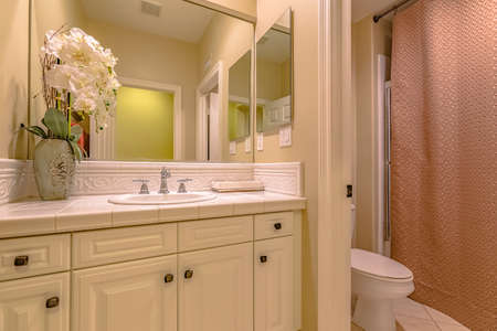 Interior of a small bathroom with a single sink vanity area and toilet