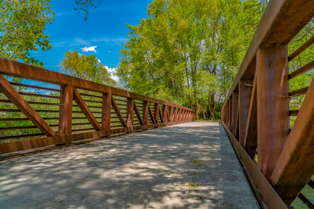 Bridge overlooking luxuriant trees with bright green leaves against blue sky Stock Photo