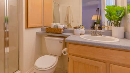 Panorama Interior of a cozy and well lighted bathroom with vanity area and toilet