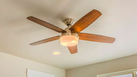 Panorama frame Ceiling fan with wooden five blade design and built in light