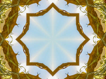Wooden bars made from Chuppah green leaves made into an abstract shape at sunset for a California wedding. Geometric kaleidoscope pattern on mirrored axis of symmetry reflection. Colorful shapes as a wallpaper for advertising background or backdrop. Stock Photo
