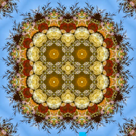 Quadruple flowers in circular arrangement at wedding in California on blue background. Geometric kaleidoscope pattern on mirrored axis of symmetry reflection. Colorful shapes as a wallpaper for advertising background or backdrop.