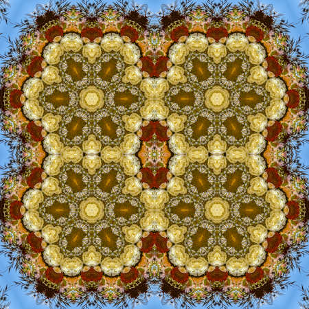 Quadruple hexagonal flowers in circular arrangement at wedding in California on blue background. Geometric kaleidoscope pattern on mirrored axis of symmetry reflection. Colorful shapes as a wallpaper for advertising background or backdrop.