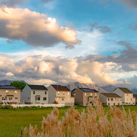 Square Tall brown grasses with stylish homes and snow capped mountain in the background