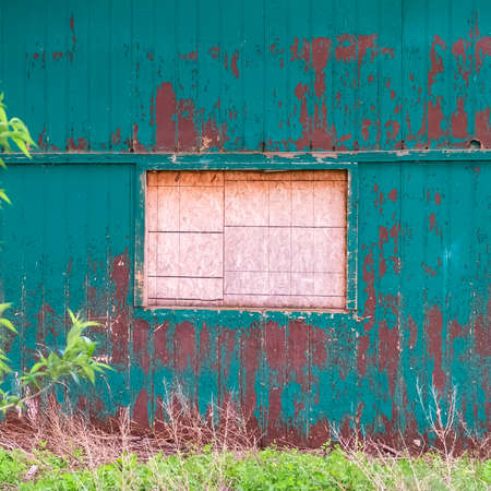 Square frame Exterior of shed in the forest with white window and peeling green paint on wall