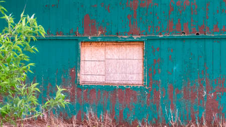 Panorama frame Exterior of shed in the forest with white window and peeling green paint on wall