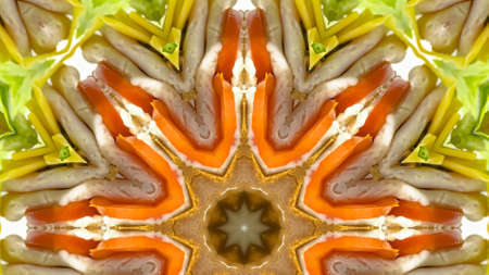 Panorama frame Close up of a sandwich in an octogon shape. Geometric kaleidoscope pattern on mirrored axis of symmetry reflection. Colorful shapes as a wallpaper for advertising background or backdrop.
