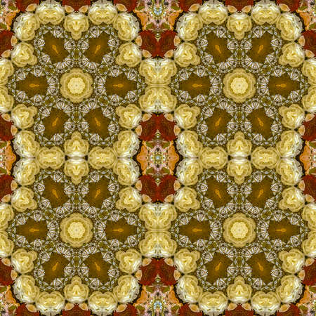 Square frame Quadruple hexagonal flowers in circular arrangement at wedding in California on blue background. Geometric kaleidoscope pattern on mirrored axis of symmetry reflection. Colorful shapes as a wallpaper for advertising background or backdrop. Imagens