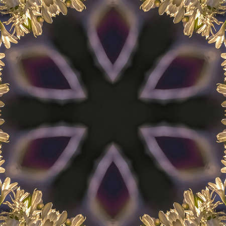 Square frame Circular glowing star shape iwth white flowers relfected around it in abstract copy space design. Geometric kaleidoscope pattern on mirrored axis of symmetry reflection. Colorful shapes as a wallpaper for advertising background or backdrop.