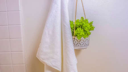Panorama frame White towel and ornamental plant hanging on a wall rod inside a bathroom