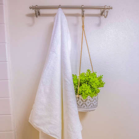 Square frame White towel and ornamental plant hanging on a wall rod inside a bathroom