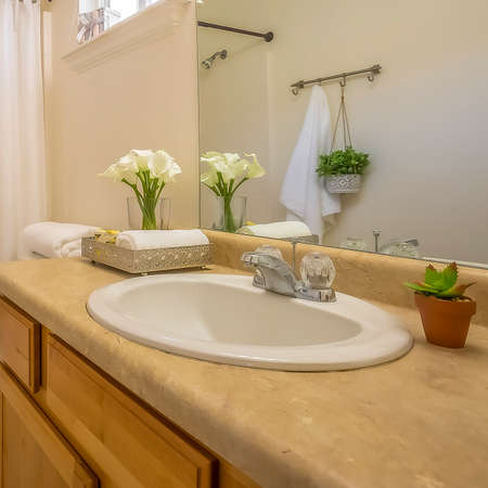 Square frame Cozy home bathroom interior decorated with lush green plants and white flowers 写真素材