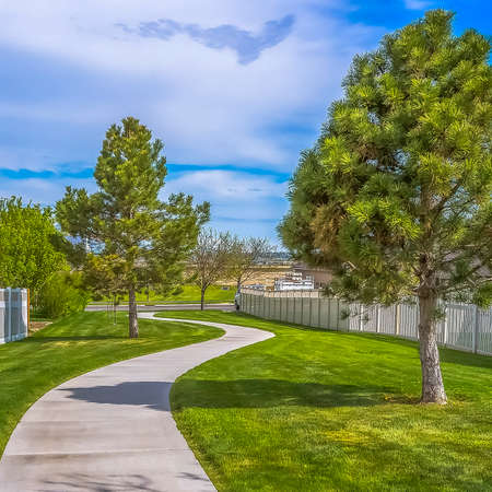Square frame Sunny day view of pathway amid vibrant green lawn and homes with wooden fence