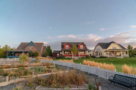 Vegetable plots and houses on an urban development. Vegetable plots and houses on a modern urban development with communal lawns and picket fence at sunset