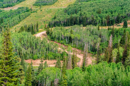 Winding hiking trails amid green conifers in Park City ski resort at off season Stock Photo