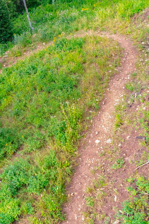 Close up of a dirt trail in the mountain of Park City Utah on a sunny summer day