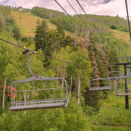 Square Vibrant green summer landscape of trees and mountain beneath chairlifts