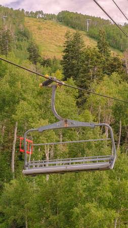 Vertical frame Vibrant green summer landscape of trees and mountain beneath chairlifts Zdjęcie Seryjne