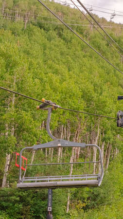 Vertical Chairlifts on cables over ski mountain with thick green trees during off season Zdjęcie Seryjne