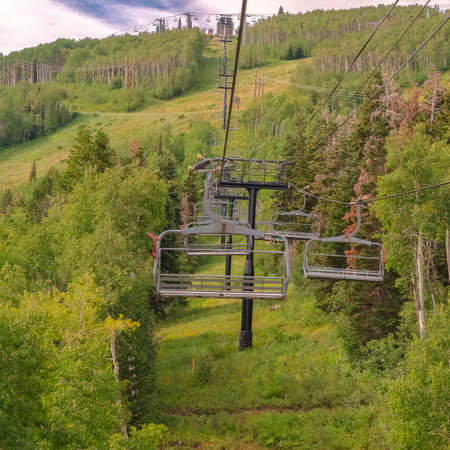 Square frame Vibrant green summer landscape of trees and mountain beneath chairlifts