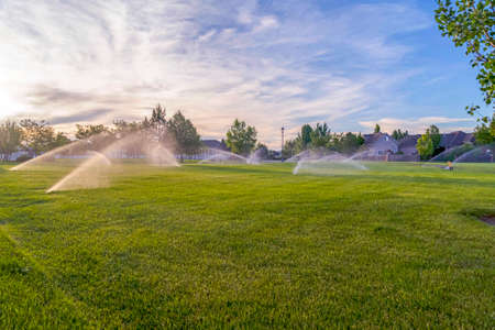 Sprinklers watering green grassy field with homes and cloudy blue sky background. Automatic watering system viewed on a scenic residential and nature landscape. Banque d'images