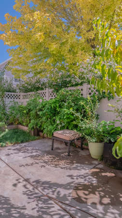 Vertical frame Small private back garden with potted plants and shady leafy green trees surrounded by walls