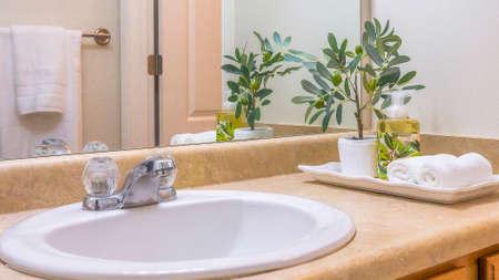Pano frame Área de tocador del baño con vista de cerca de toallas y plantas al lado del lavabo. La pared blanca, el espejo, el gabinete de madera y la encimera de mármol también se pueden ver dentro de esta habitación.