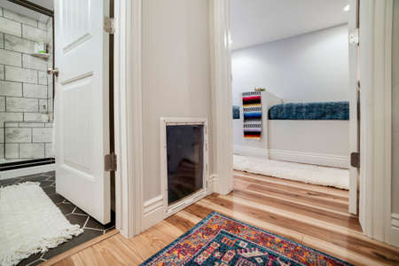 Interior of home with carpet on wooden floor and glass pane on the white wall. Bathroom shower stall and built in seats can be seen through the open doors.