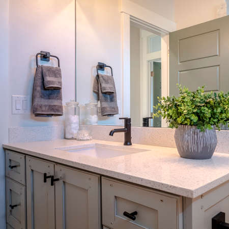 Photo Square Bathroom vanity cabinet with sink black faucet ornamental plant and mirror. The black shower fixture and open door are reflected on the mirror.
