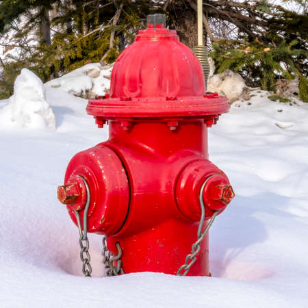 Photo Square frame Vibrant red fire hydrant against fresh snow during winter in Park City Utah. Snowy green coniferous tree and buildings can be seen in the background.