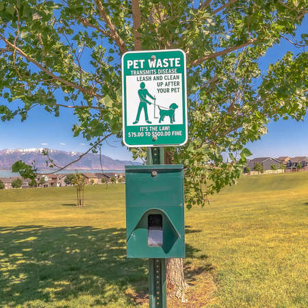 Square frame Dog poop bags and garbage can against timpanogos mountains and blue lake