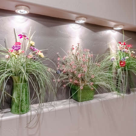 Square crop Flower arrangements in a recessed alcove under lights in a neutral light interior grey wall Archivio Fotografico
