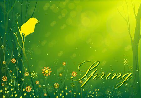 ruiseñor: La canción del ruiseñor en la primavera