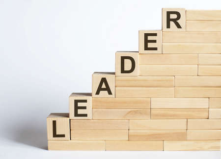 Work strategy on the wood blocks LEADER on white background Фото со стока