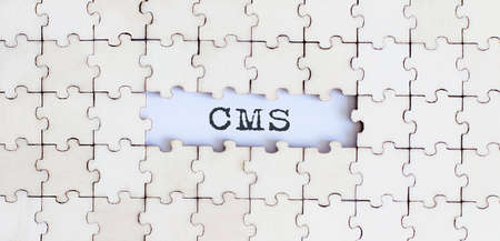 CMS .Business concept. White puzzle pieces with different phrases on white background, top view